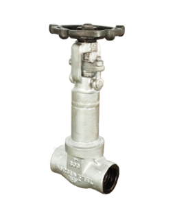 Bellow Seal Forged Globe Valve